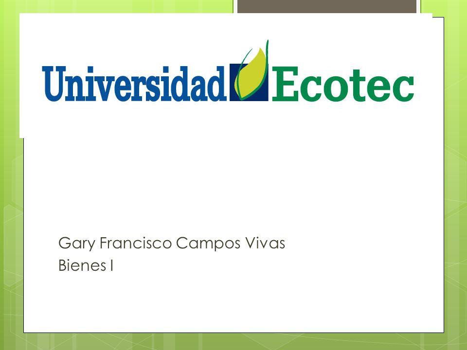 Gary Francisco Campos Vivas Bienes I