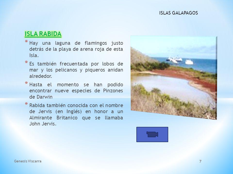 ISLA RABIDA Hay una laguna de flamingos justo detrás de la playa de arena roja de esta Isla.