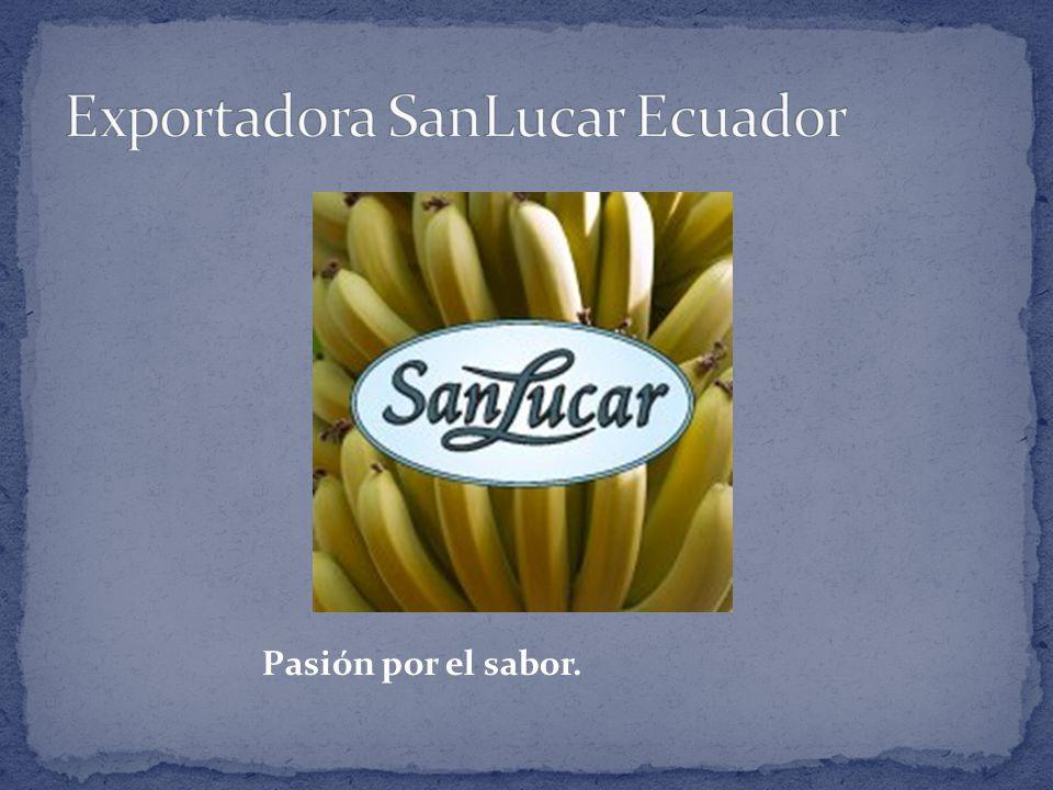 Exportadora SanLucar Ecuador