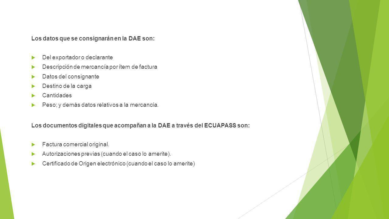 Los datos que se consignarán en la DAE son: