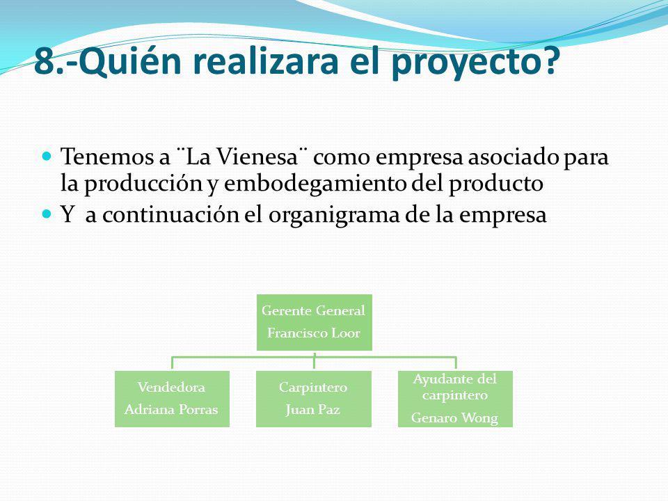 8.-Quién realizara el proyecto