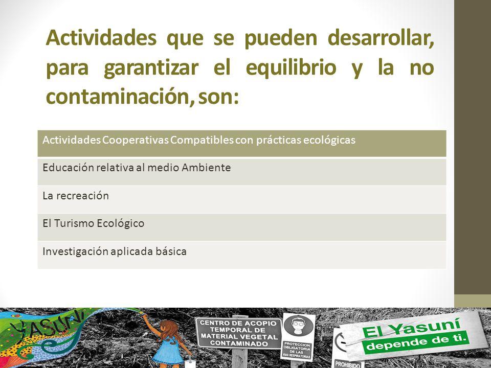 Actividades que se pueden desarrollar, para garantizar el equilibrio y la no contaminación, son:
