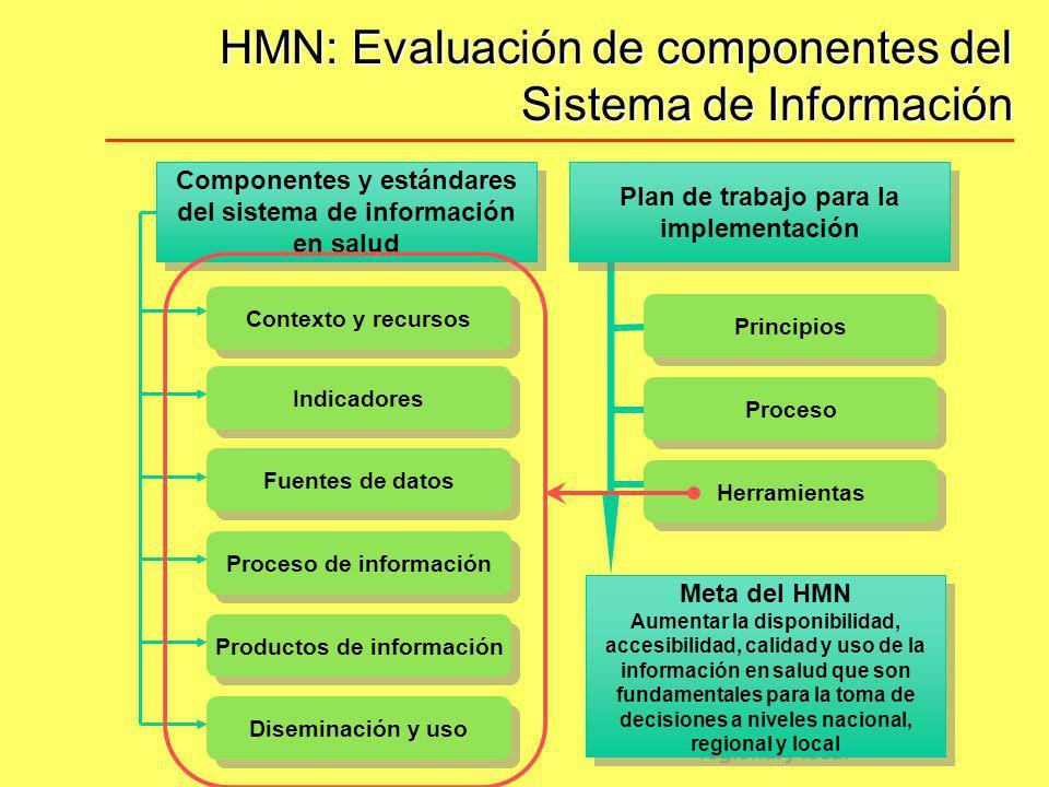 HMN: Evaluación de componentes del Sistema de Información