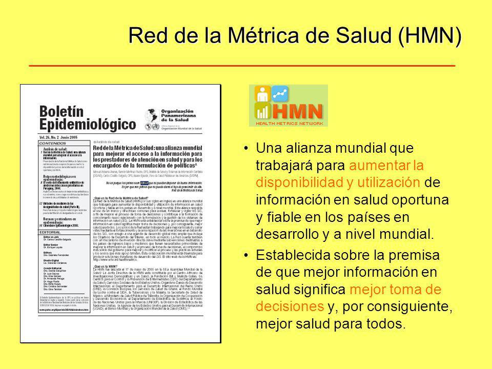 Red de la Métrica de Salud (HMN)