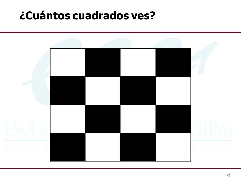 ¿Cuántos cuadrados ves