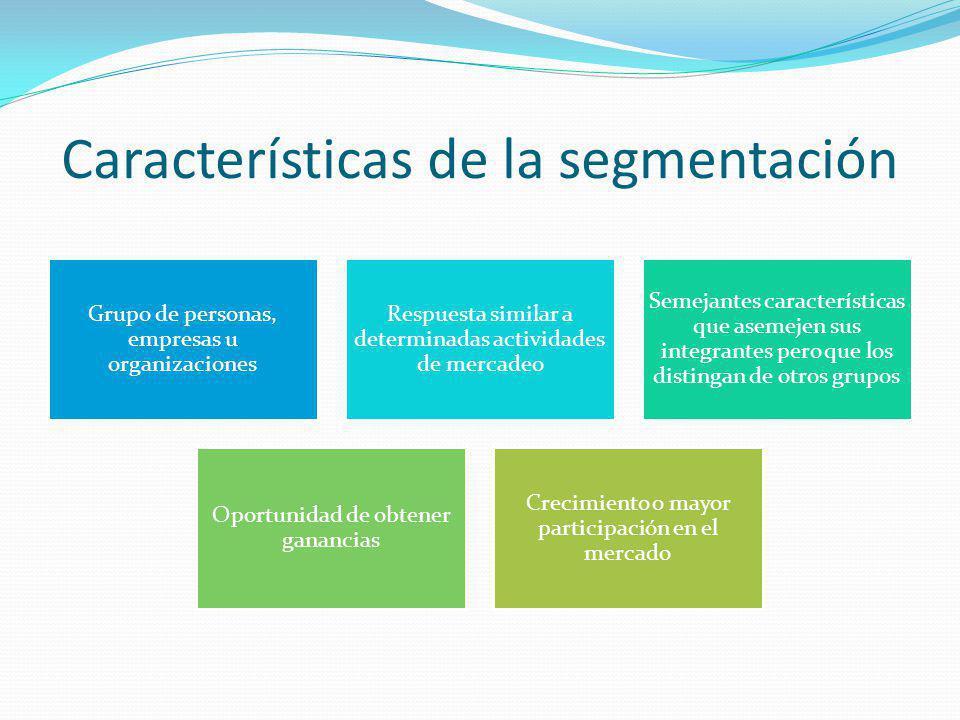 Características de la segmentación