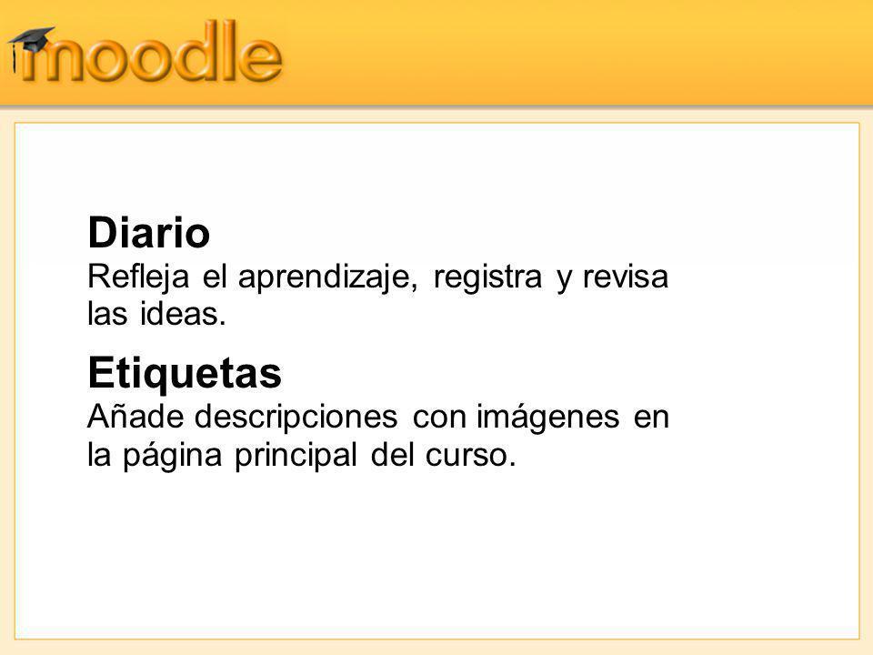 Diario Refleja el aprendizaje, registra y revisa las ideas.