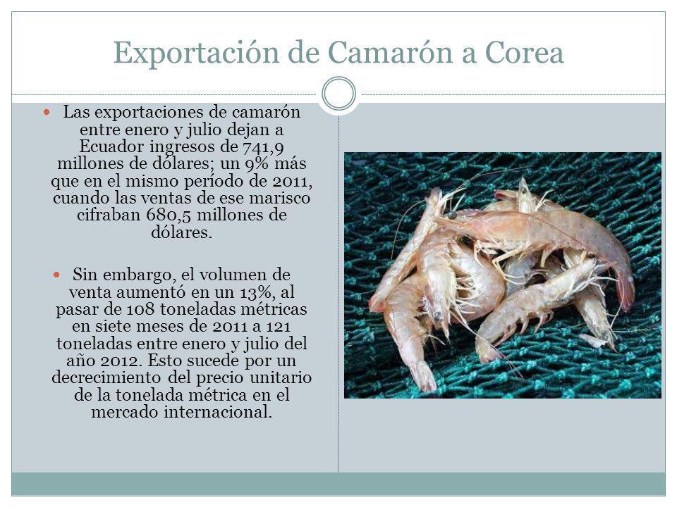 Exportación de Camarón a Corea