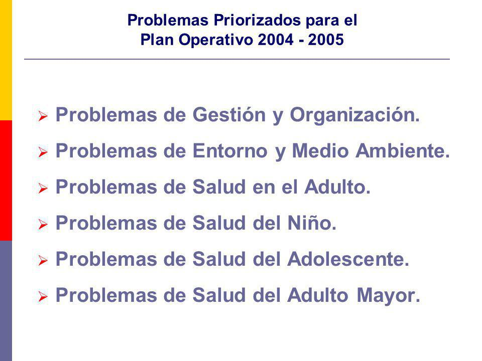 Problemas Priorizados para el Plan Operativo 2004 - 2005