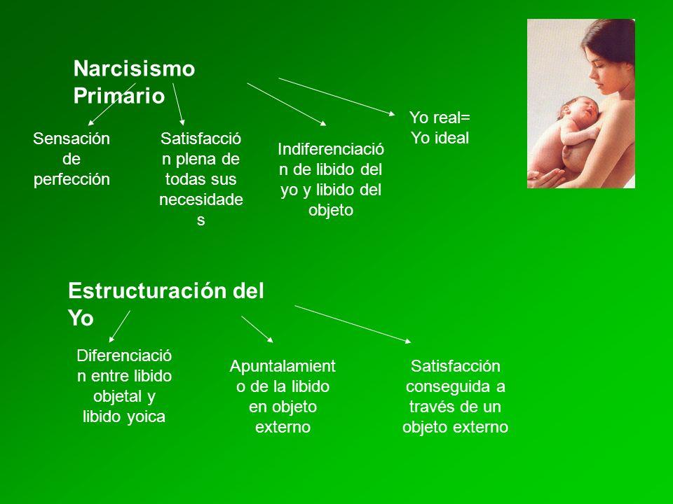 Narcisismo Primario Estructuración del Yo Yo real= Yo ideal