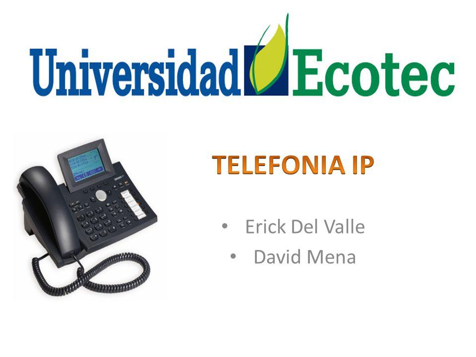 Erick Del Valle David Mena