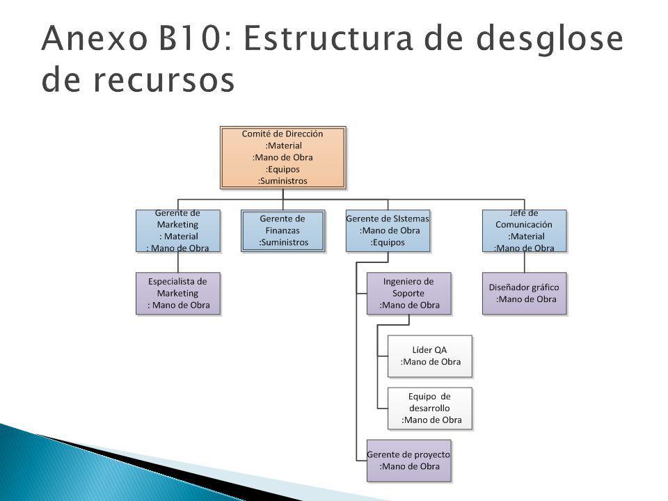 Anexo B10: Estructura de desglose de recursos