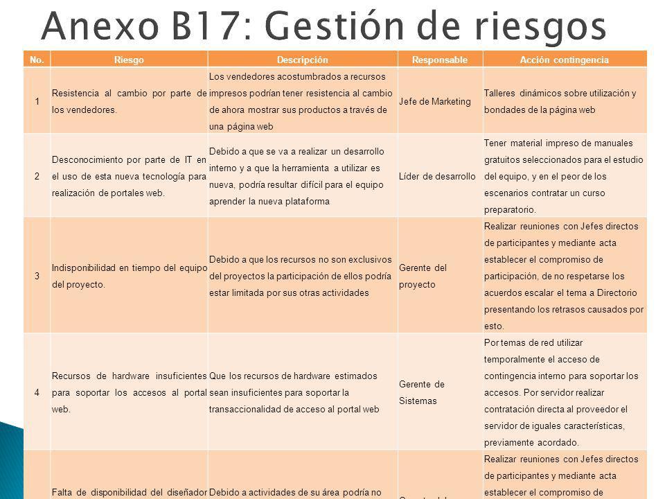 Anexo B17: Gestión de riesgos