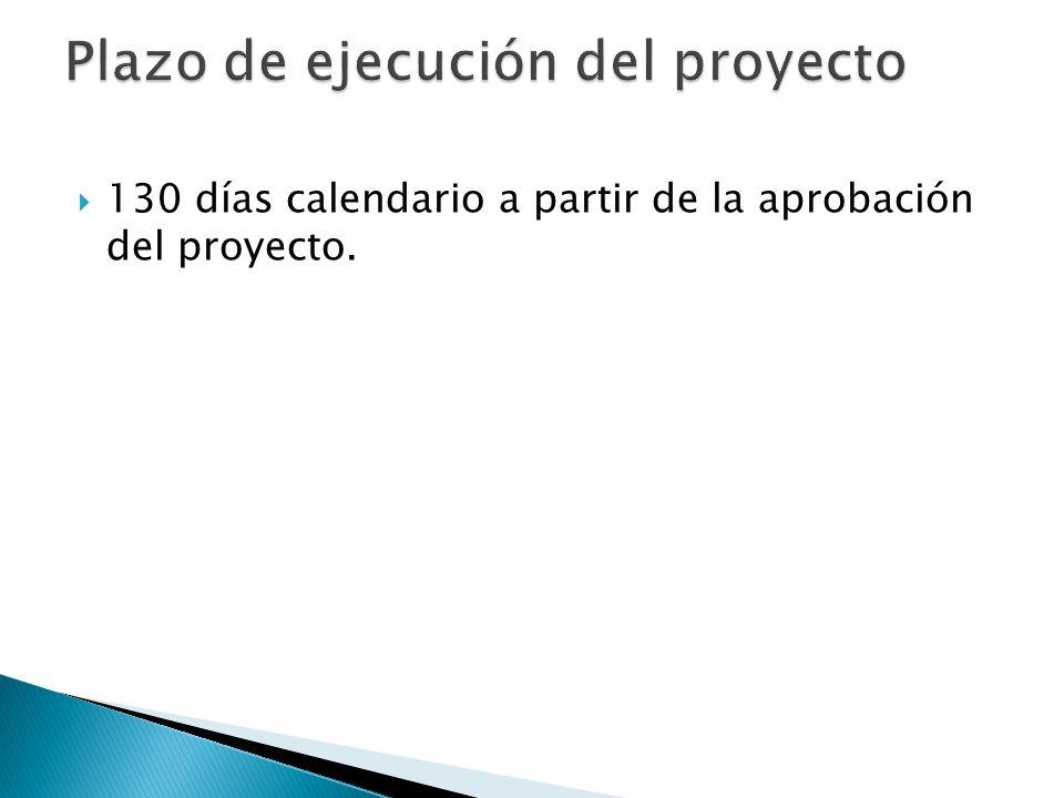 Plazo de ejecución del proyecto