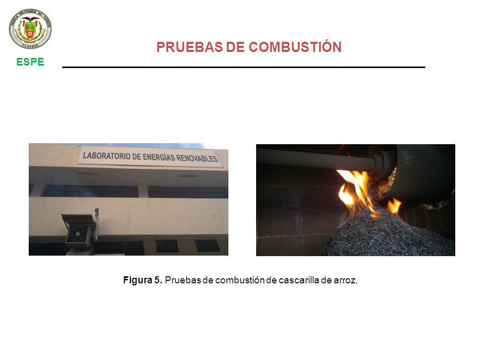 PRUEBAS DE COMBUSTIÓN ESPE
