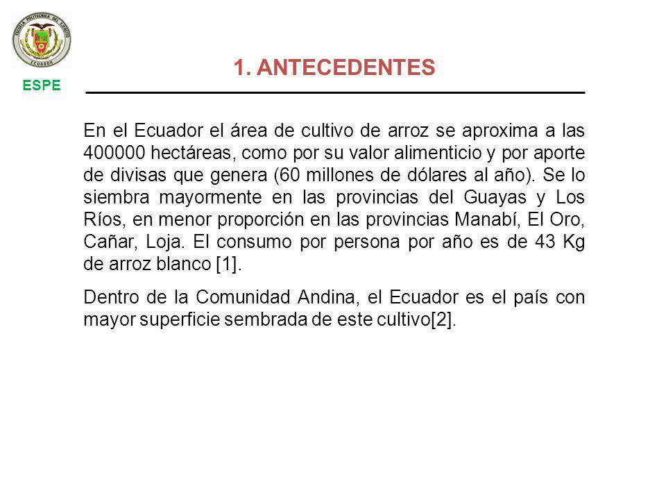 1. ANTECEDENTES ESPE.