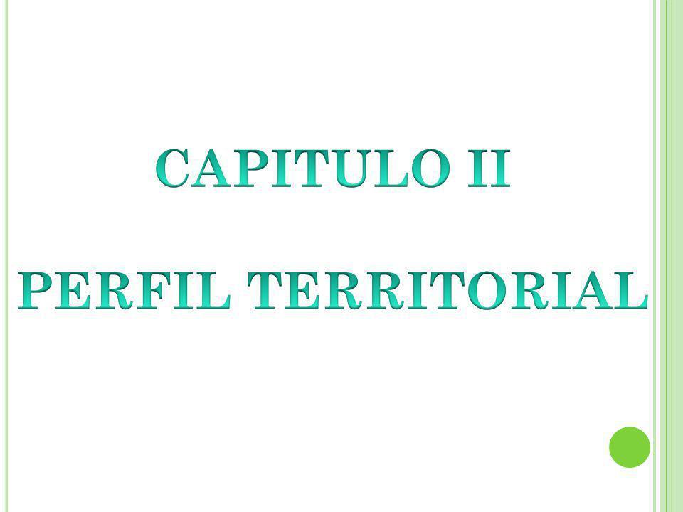 CAPITULO II PERFIL TERRITORIAL