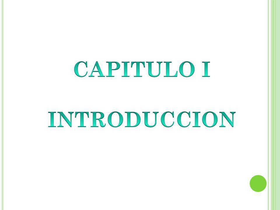 CAPITULO I INTRODUCCION