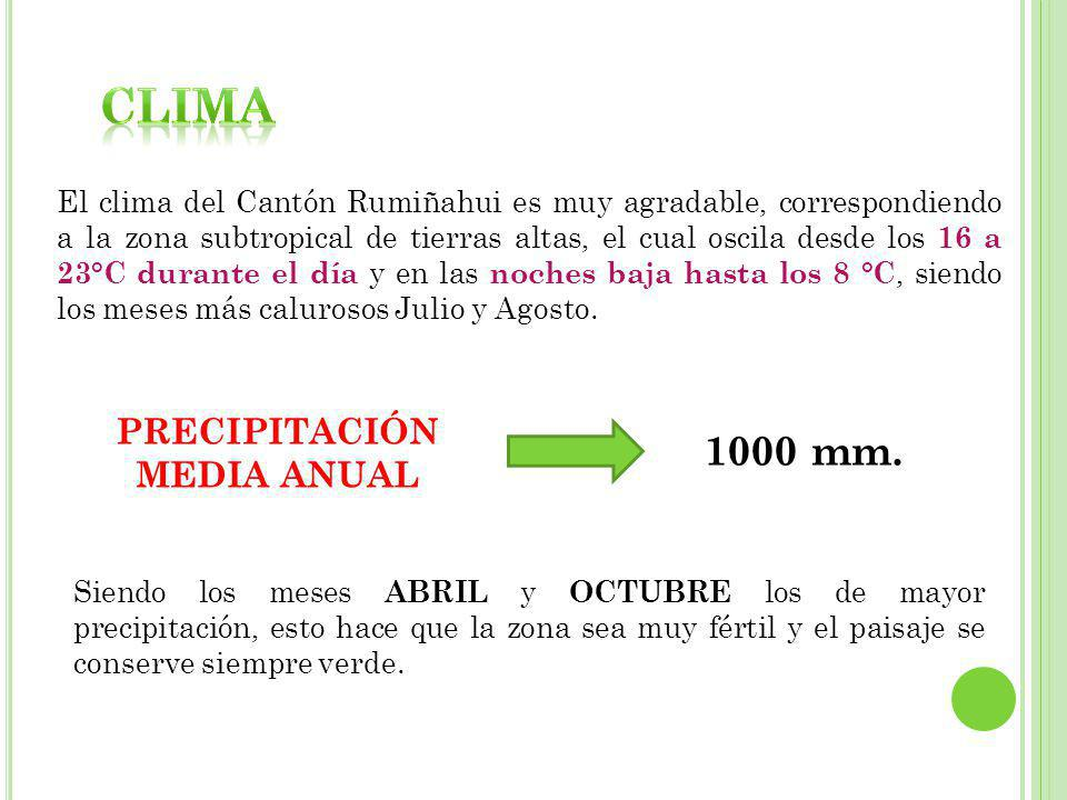 PRECIPITACIÓN MEDIA ANUAL