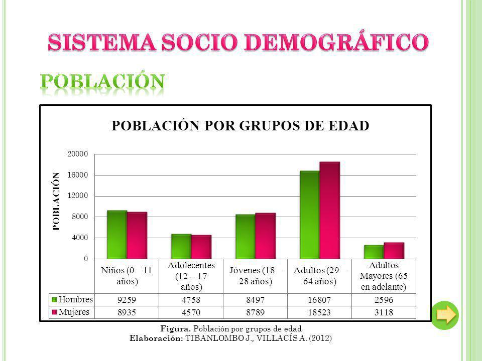 SISTEMA SOCIO DEMOGRÁFICO