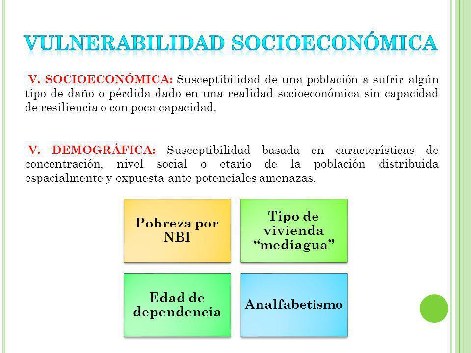 VULNERABILIDAD SOCIOECONÓMICA