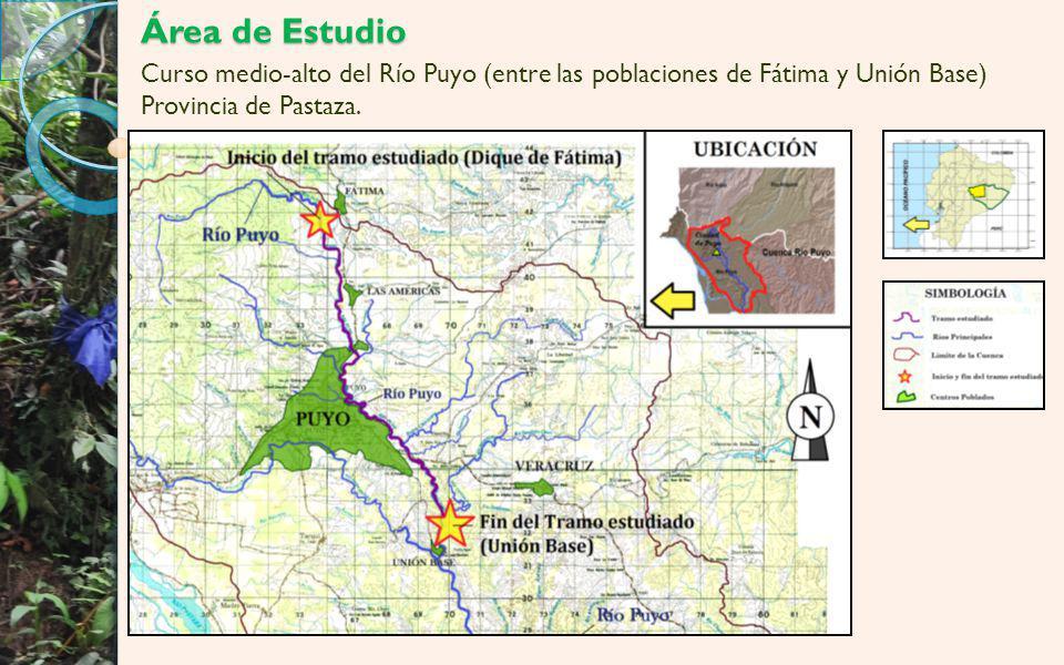 Área de Estudio Curso medio-alto del Río Puyo (entre las poblaciones de Fátima y Unión Base) Provincia de Pastaza.