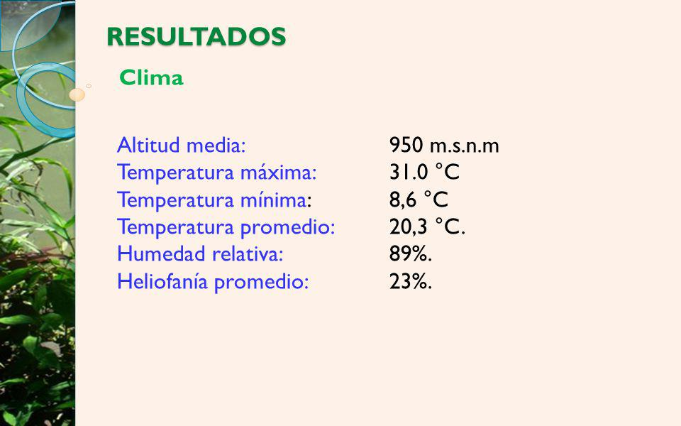 RESULTADOS Clima Altitud media: 950 m.s.n.m