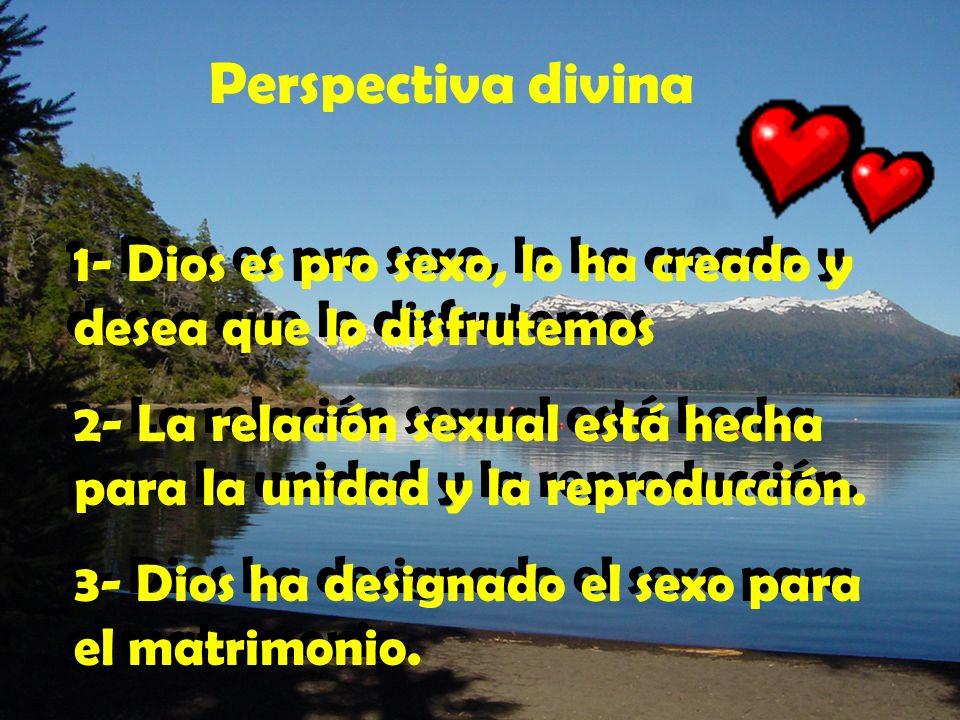Perspectiva divina 1- Dios es pro sexo, lo ha creado y desea que lo disfrutemos. 2- La relación sexual está hecha para la unidad y la reproducción.