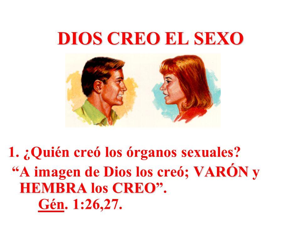 DIOS CREO EL SEXO 1. ¿Quién creó los órganos sexuales
