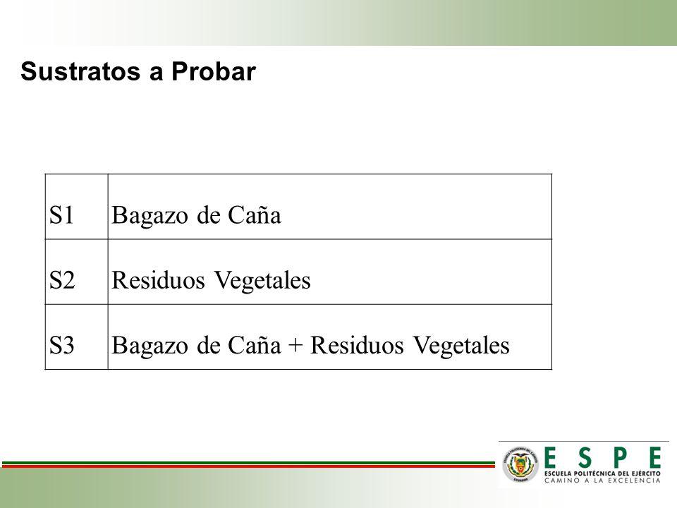 Bagazo de Caña + Residuos Vegetales