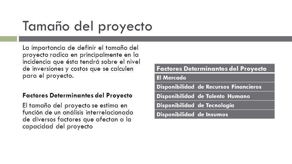 Tamaño del proyecto Factores Determinantes del Proyecto