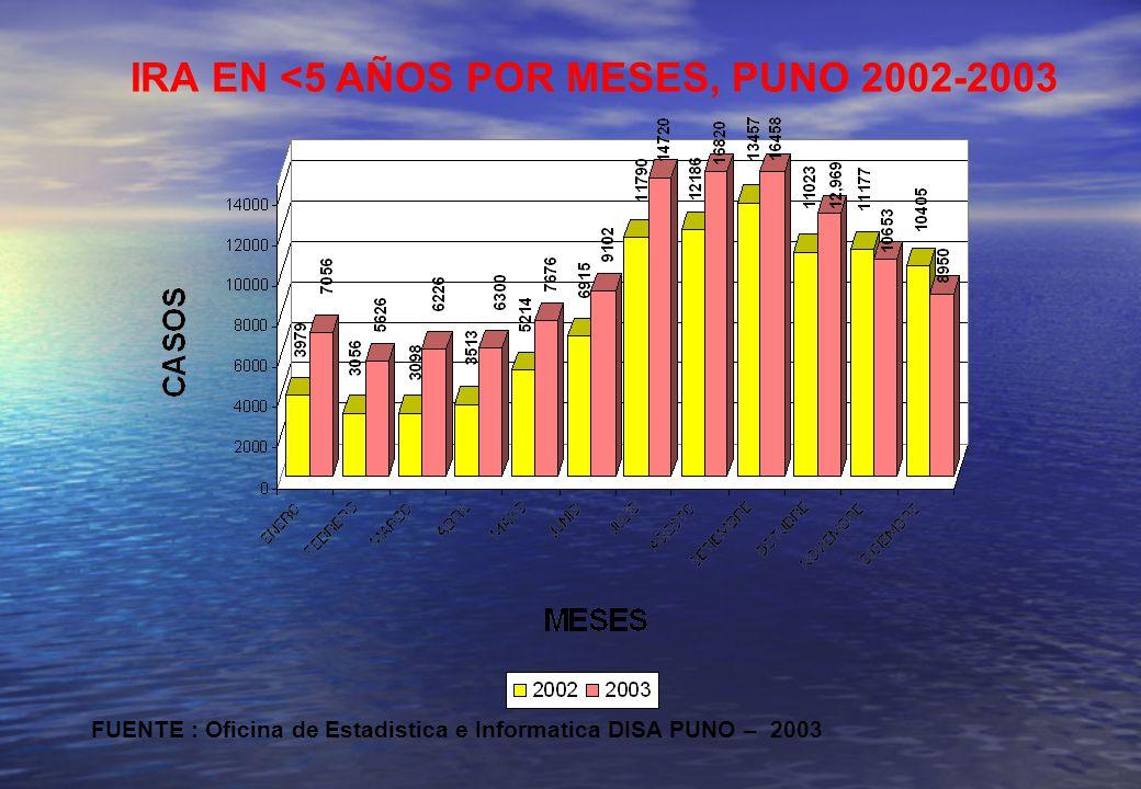IRA EN <5 AÑOS POR MESES, PUNO 2002-2003