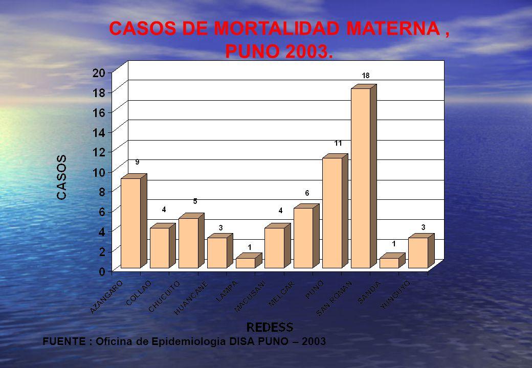 CASOS DE MORTALIDAD MATERNA ,