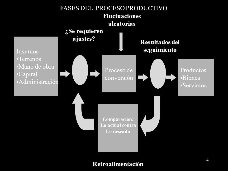 FASES DEL PROCESO PRODUCTIVO