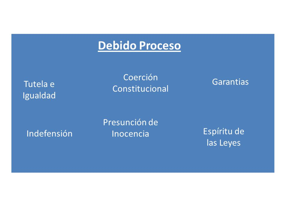 Debido Proceso Coerción Constitucional Garantias Tutela e Igualdad