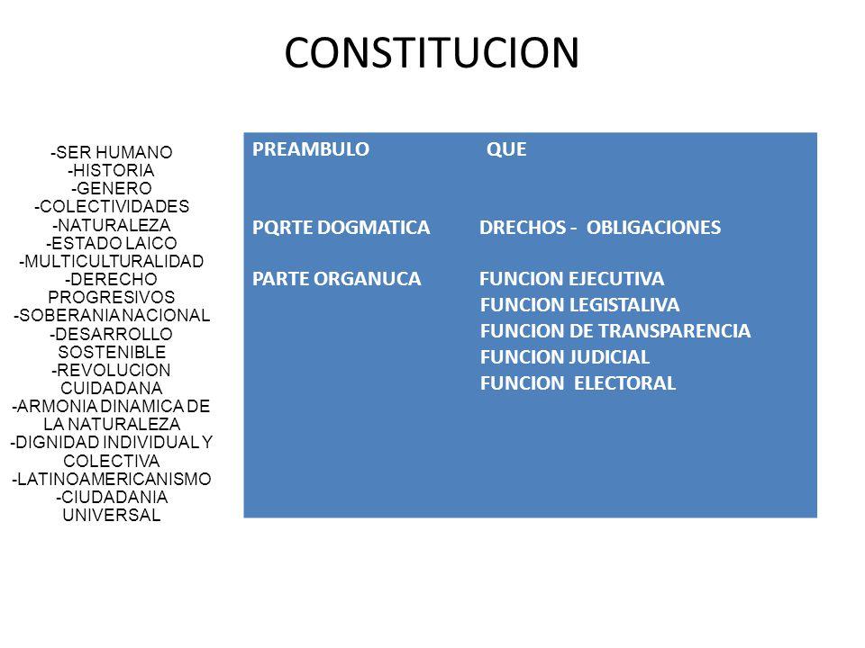 CONSTITUCION PREAMBULO QUE PQRTE DOGMATICA DRECHOS - OBLIGACIONES