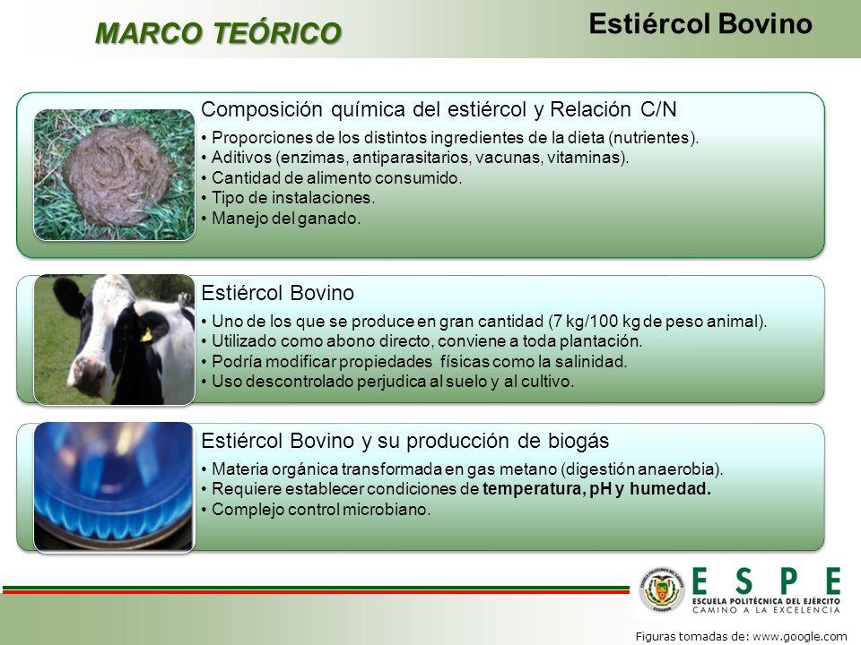 Estiércol Bovino MARCO TEÓRICO
