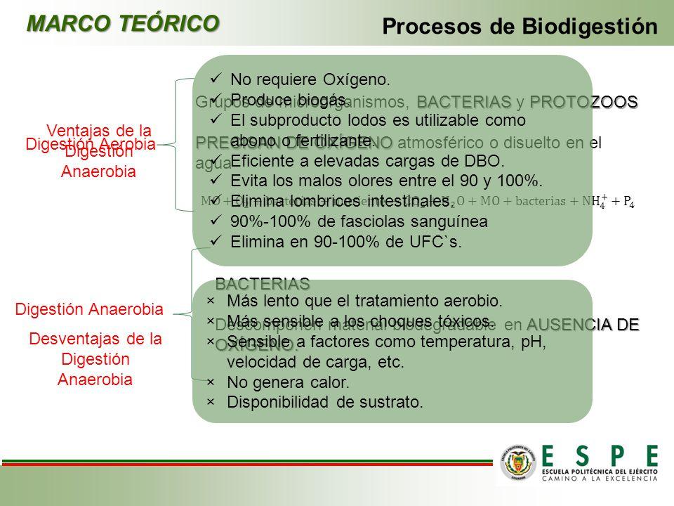 Procesos de Biodigestión