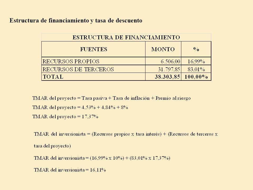Estructura de financiamiento y tasa de descuento
