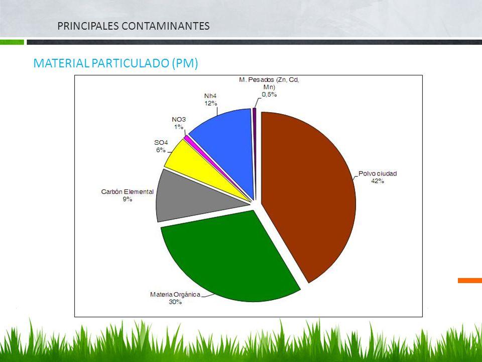 MATERIAL PARTICULADO (PM)