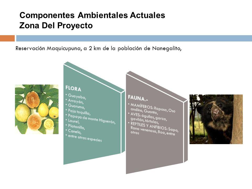 Componentes Ambientales Actuales Zona Del Proyecto