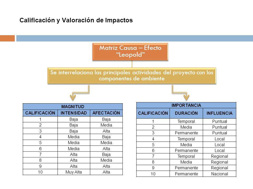 Calificación y Valoración de Impactos