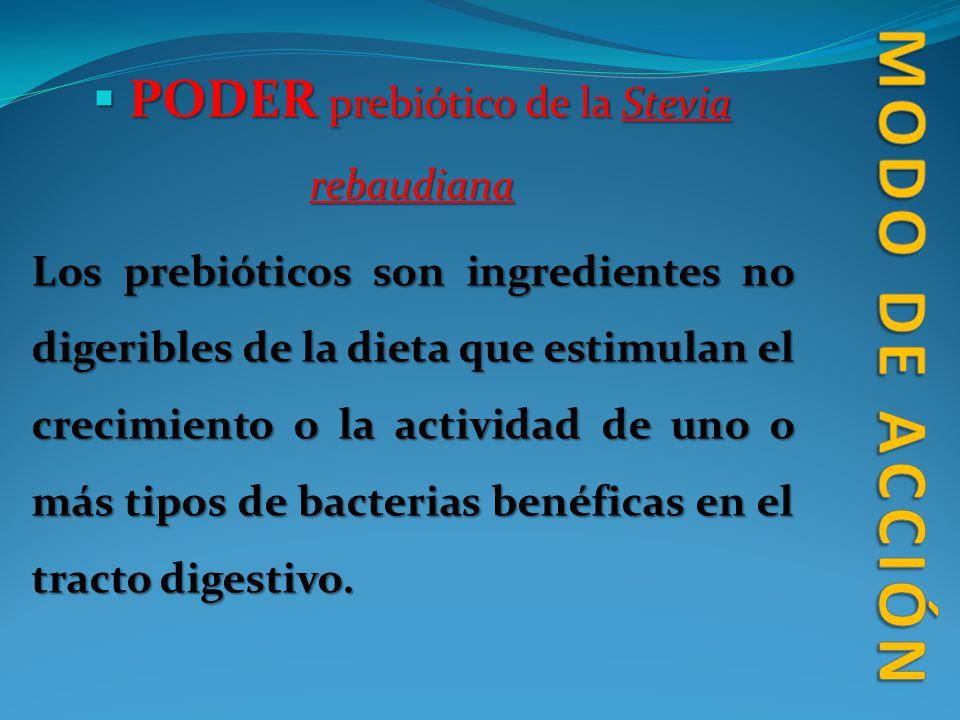 PODER prebiótico de la Stevia rebaudiana