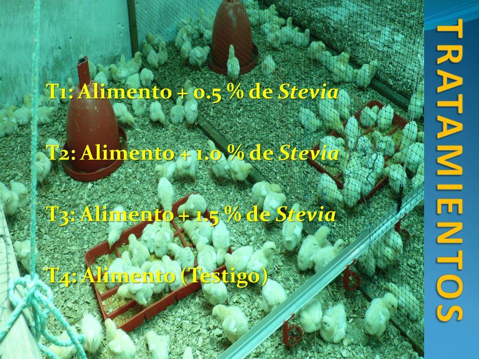 tratamientos T1: Alimento + 0.5 % de Stevia