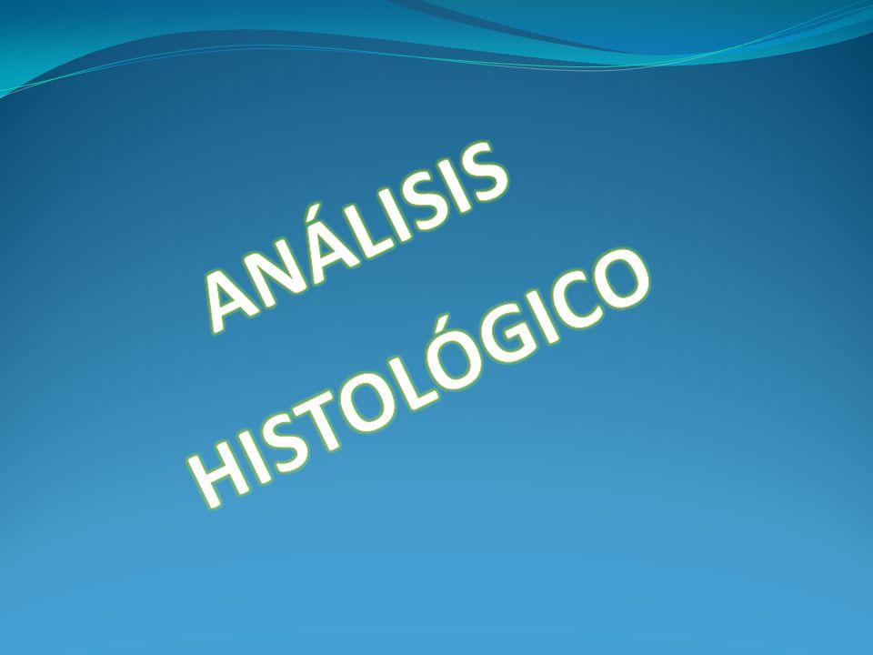 ANÁLISIS HISTOLÓGICO