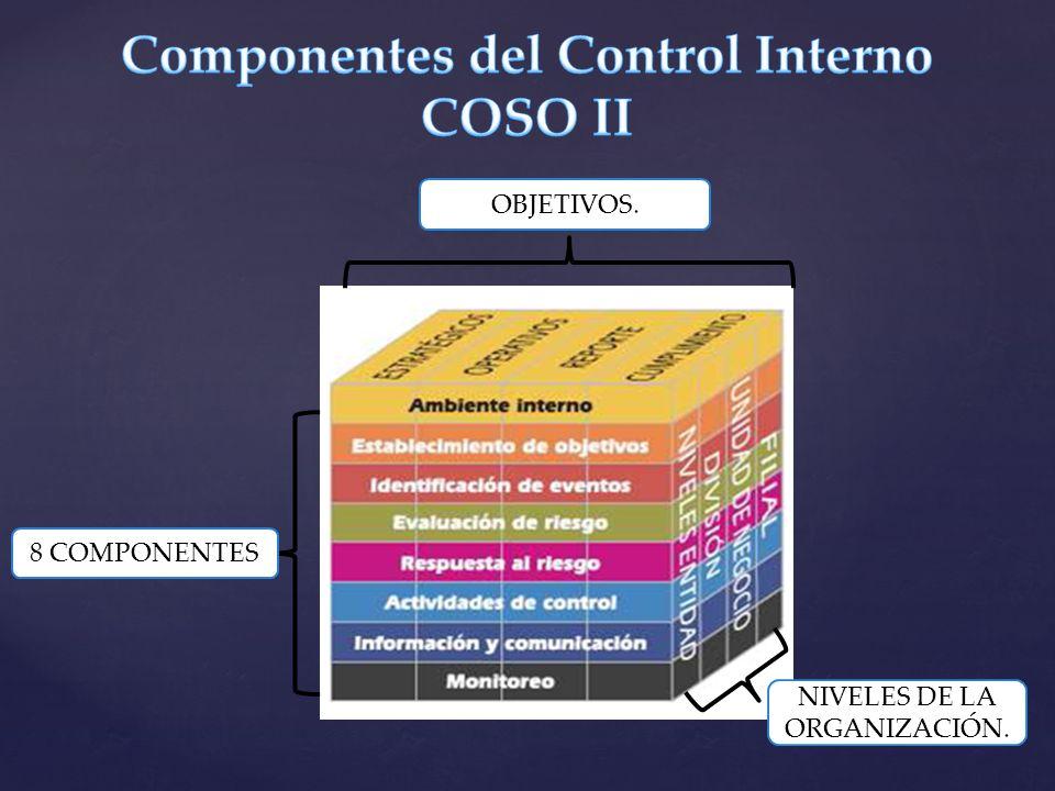 Componentes del Control Interno COSO II