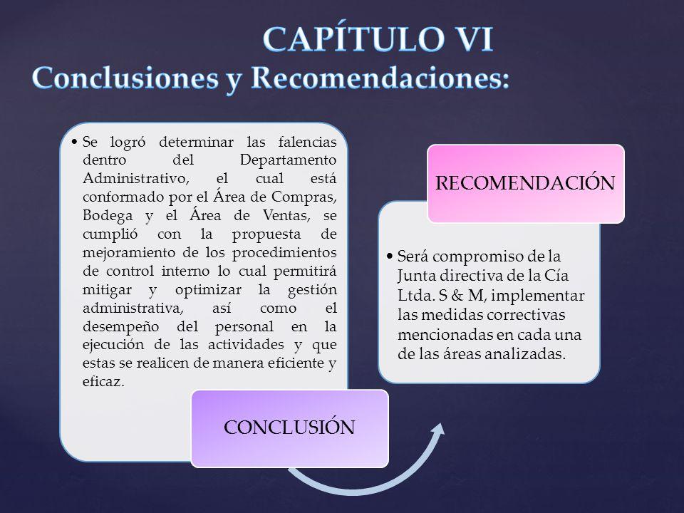CAPÍTULO VI Conclusiones y Recomendaciones:
