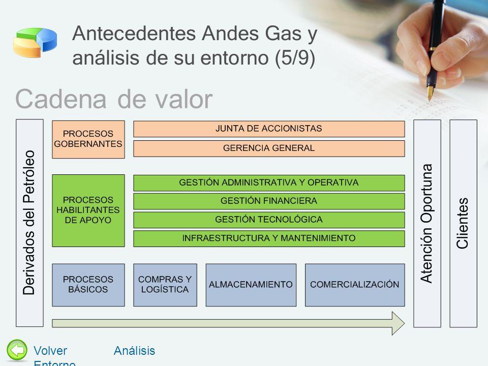 Antecedentes Andes Gas y análisis de su entorno (5/9)