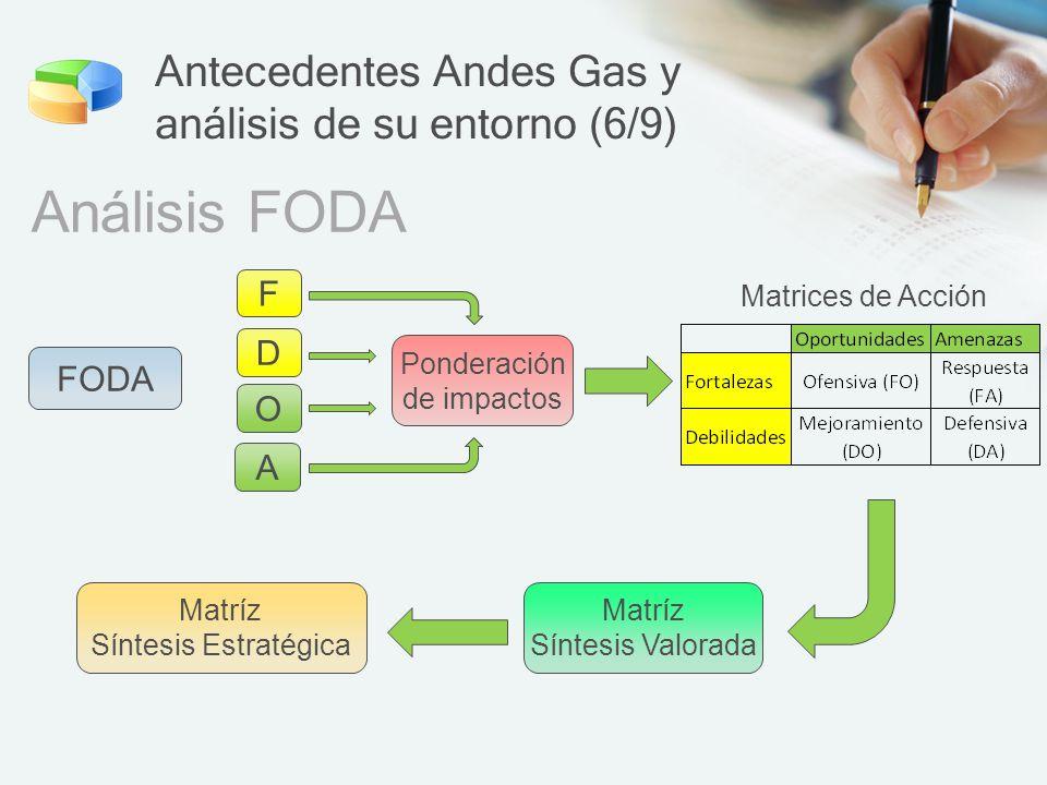 Antecedentes Andes Gas y análisis de su entorno (6/9)