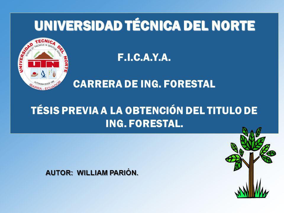 UNIVERSIDAD TÉCNICA DEL NORTE F. I. C. A. Y. A. CARRERA DE ING